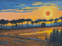 Sonnenuntergang über Pinien