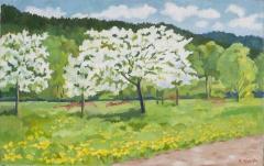 Blühende Apfelbäume