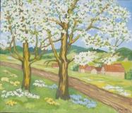 Kirschbäume Thürn