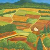 Felder mit Pinien und kleinen Häusern