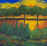 Pinien mit Sonnenuntergang